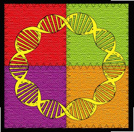 DNA_patchwork