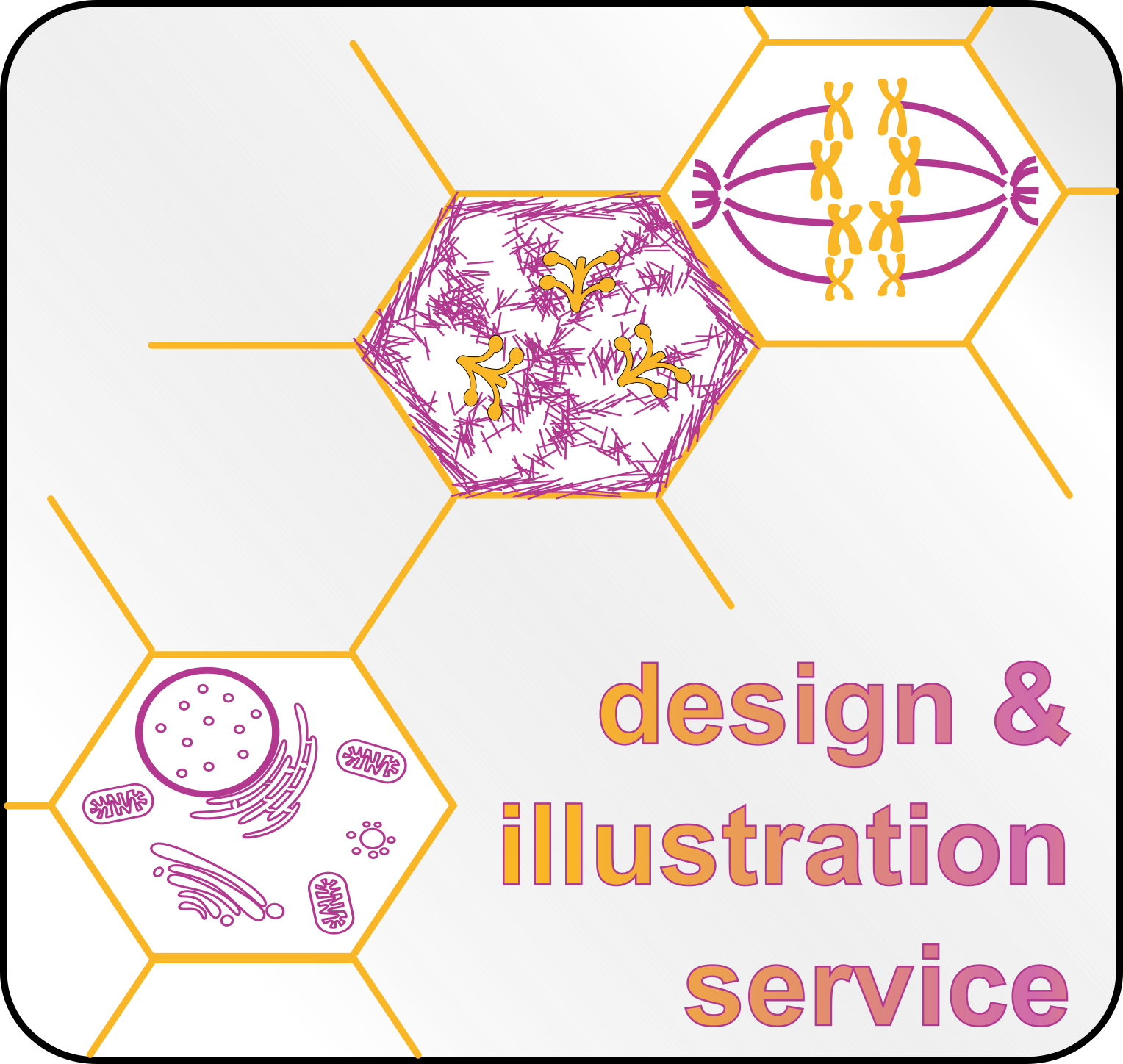 Design and Illustration Service