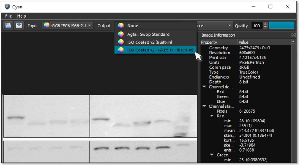 exporting to greyscale in Cyan image converter